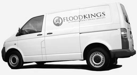About Flood Kings