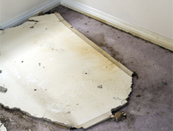 Flood Damage Restoration Dallas