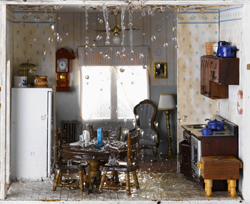 Home Damage Repair in TX